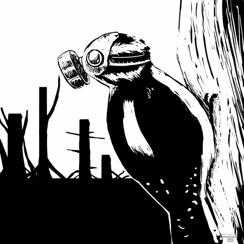 A black and white woodpecker wearing a gas mask overlooking a cut down forest